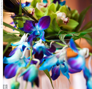 Cascading dendrobium orchids in a vibrant shade of blue were paired with green cymbidium orchids.