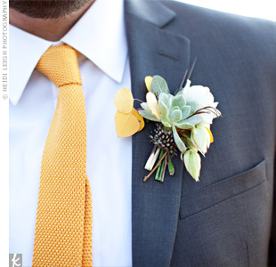 Porcupine Quill and Succulent Boutonniere
