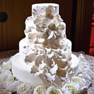 dual layer dvd wedding cakes houston. Black Bedroom Furniture Sets. Home Design Ideas
