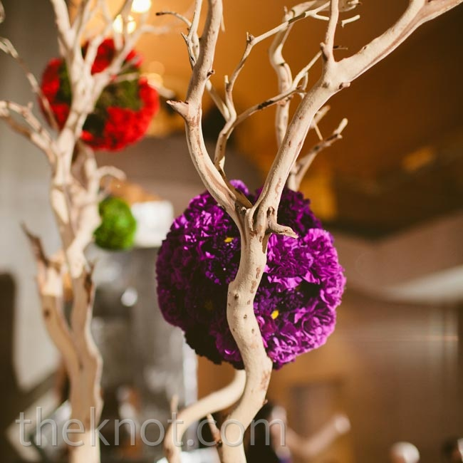 Two tall manzanita trees adorned with colorful carnation pomanders flanked the couple as they exchanged vows.