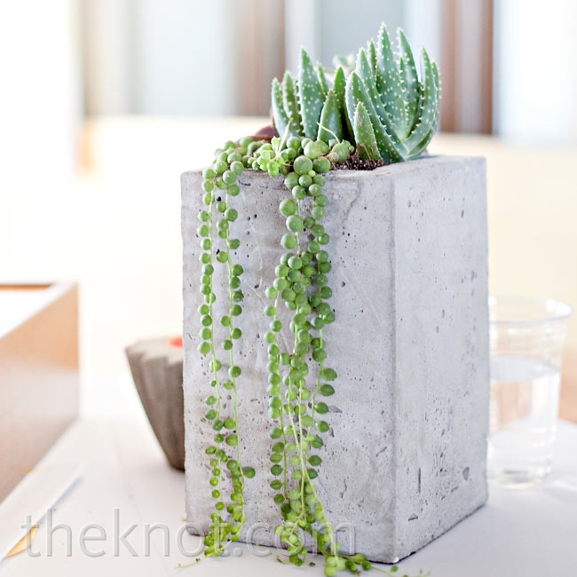 Rebecca kept the art theme consistent throughout all the details, including the centerpieces, which were sculpture-like arrangements of succulents and spider mums in concrete planters.