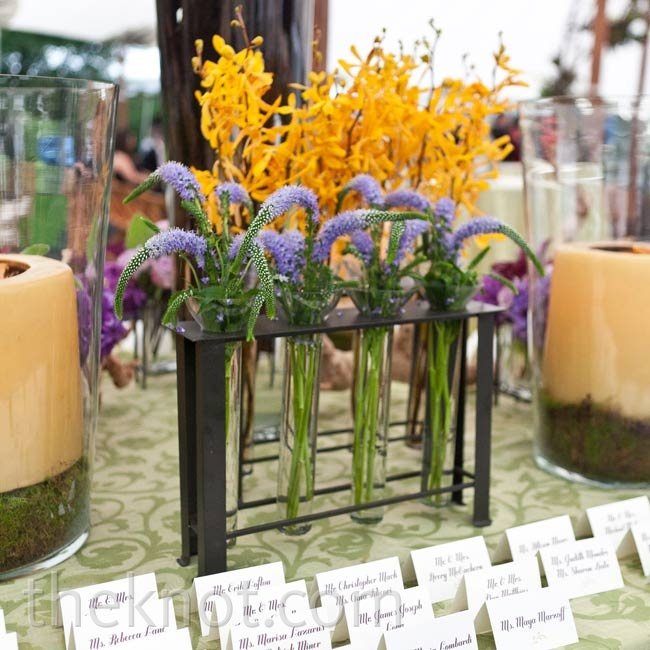 Test-tube-like vases of various flowers decorated the escort card table.