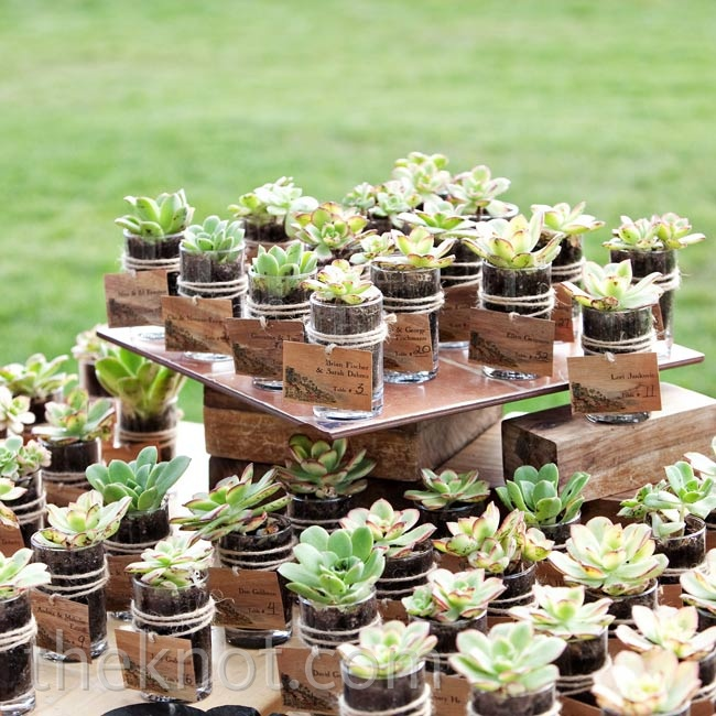 Thin wooden escort cards were tied around mini hand-potted succulents.