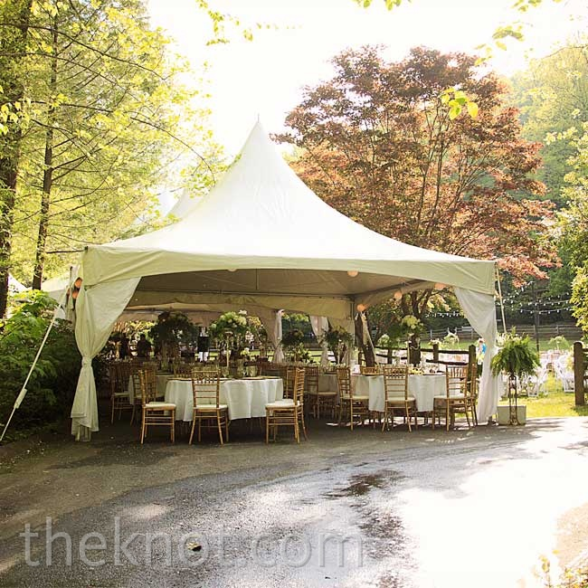 The natural ambience made the Smithgall Woods a picturesque spot for Chelsey and Jason's wedding.