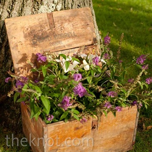 An antique wooden milk box was filled with a purple butterfly bush to tie into the country setting.