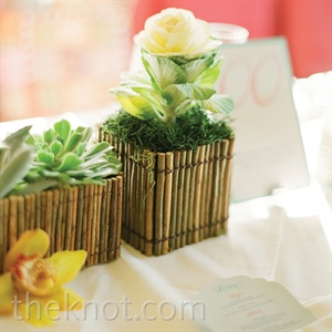 "Rustic-style containers held cabbage ""roses"" and succulents, while orange orchids were scattered on the tables for accents of color."