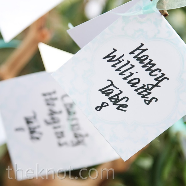 Amy and her mom folded and calligraphed the cards themselves, and hing them from a small tree.