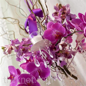 Hanging Orchid Arrangement