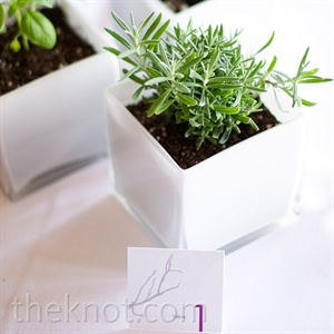 Modern Green Centerpieces