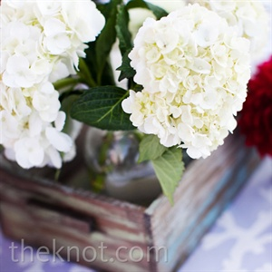 White and red hydrangeas were displayed loosely