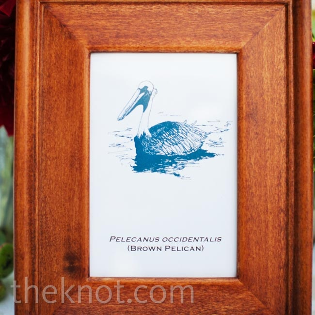 Each table was labeled with a different sea creature to tie into the ocean theme.