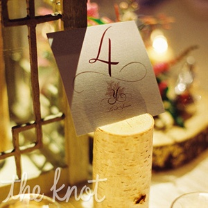 Natural logs held the formal, scripted table numbers.