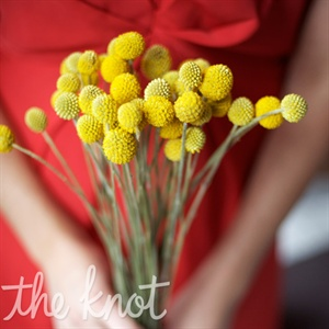 Yellow Craspedia Bouquet