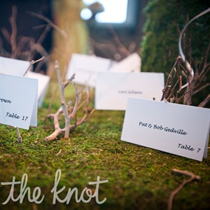 Simple tented cards were scattered on a table arranged with moss and manzanita branches.