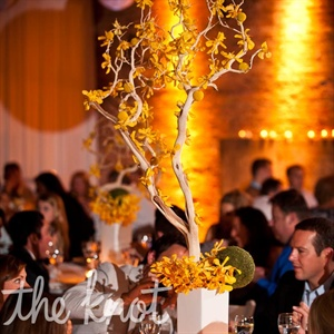 Dramatic tall manzanita branches draped in Mokara orchids and craspedia graced a third of the tables.