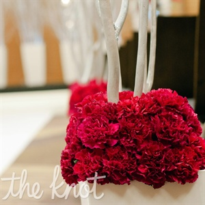 Carnation Aisle Decor