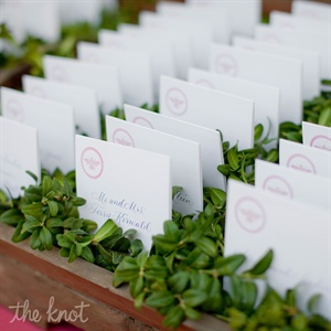 Lauren and Ross wanted to keep the natural, casual feel of an outdoor wedding throughout the décor, so displayed the escort cards in boxwood.