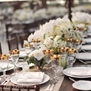 Gold Embellished Wine Goblets