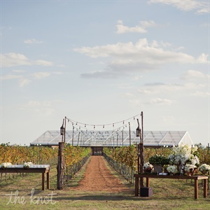 The custom clear-top tent showcased the vast starry Texas sky, and its oversize windows kept the vineyard in sight. Plus, setting up the ceremony in the exact spot where Brian proposed to Maile brought another level of meaning to the moment.