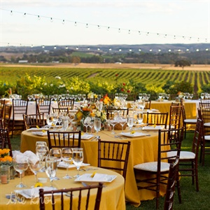 Outdoor Reception at Still Waters Vineyards