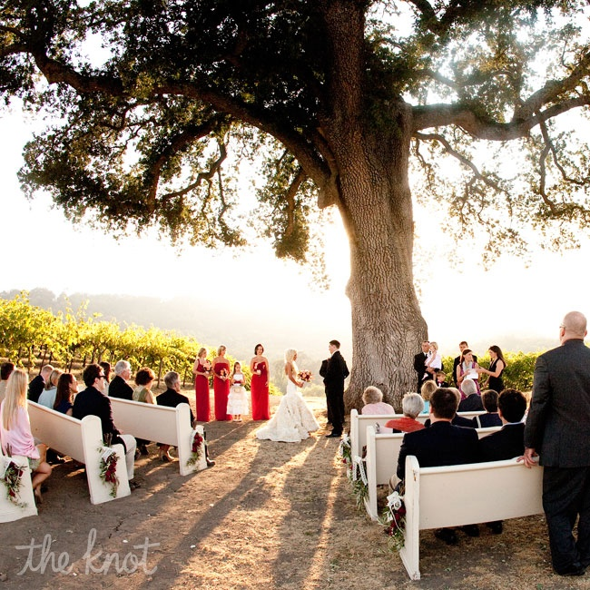 Lauren and Mike's ceremony took place at dusk beneath a lone, old oak on a hillside among rows of black grape vines. Copper offering bowls filled with organic lavender buds—hand-dried by Lauren's mother-in-law—were passed around so that the guests could shower the couple during the recessional. Reclaimed white church pews from Marigold Vintage Rent ...