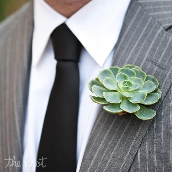 Succulents were the featured flower at the wedding and were used for the bridal parties' boutonnieres. Fidelma found most of her wedding inspiration on Etsy.com, where she purchased the succulents.