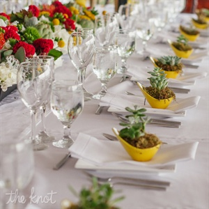 Mod yellow dishes planted with succulents decorated each place setting and served as fun favors.