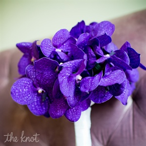 Raquels bouquet was an all purple orchid bouquet that really stood out.