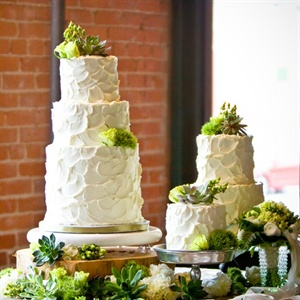 For Corie and Adrian, taste was first. They chose multiple cakes with various flavors and topped the buttercream confections with succulents for a lush, organic look.