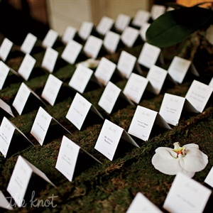 Understated cards rested on a delicate layer of moss, while a few carefully placed orchids dressed up the earthy arrangement.