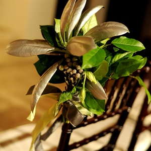Green Ceremony Chair Decor