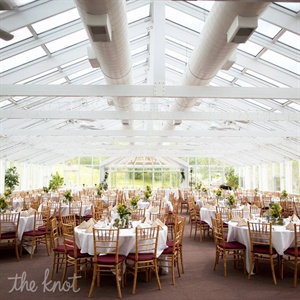 The couple fell in love with their venue because it used to be a greenhouse - a perfect match for their garden theme!