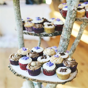 The goom's sister made the cupcakes for the wedding which sat on a tree stand that the groom made himself.