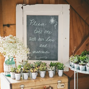 Potted Succulent Plant Favors
