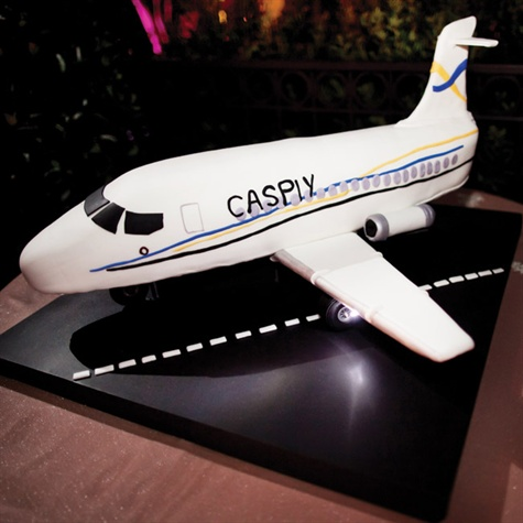 Airplane-shaped Cake