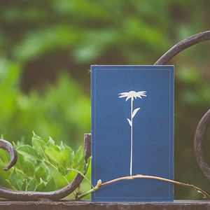 Dark  Blue Invitations