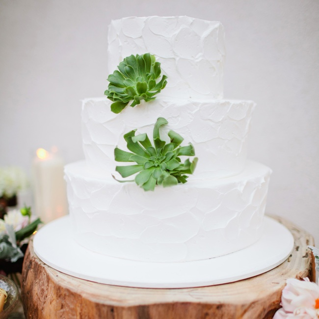 The elegant buttercream-frosted cake was topped with two fresh succulents.