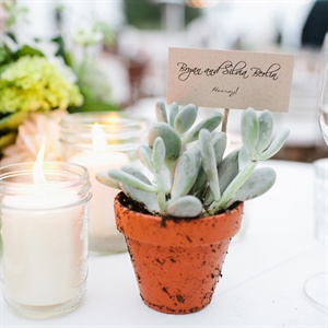 Silvia potted the succulents herself and made the escort cards as well.