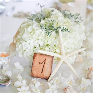 Low, lush floral arrangements of white hydrangeas and grey dusty miller accents decorated the reception tables.