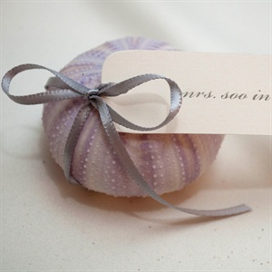 The couple hand-tied name cards to lavender sea urchin shells (for meat eaters) and starfish (for vegetarians).