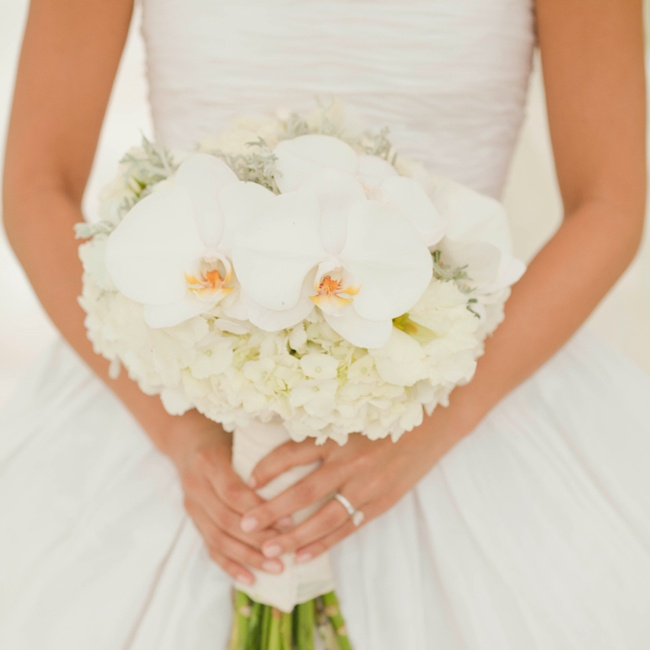 The bride carried a lush hand-tied bouquet of white hydrangeas, white spray roses, white lisianthus, and white phalaenopis orchids and dusty miller accents with white ivory binding and white shell accent.