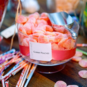 Guests snacked on favorites like gummy peaches and pixy stix at the candy bar.