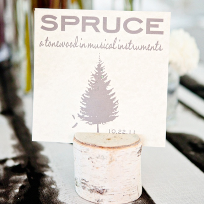 Each table was named after different trees -- the bride made the cards and stuck them in birch stands.