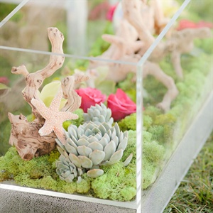 Terrarium Ceremony Décor