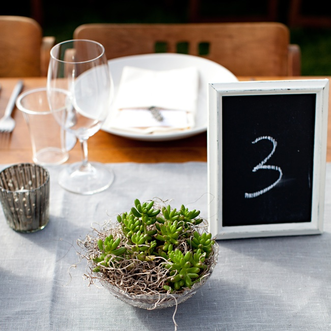 Different types of succulents lined the reception tables along with framed chalkboard table numbers.