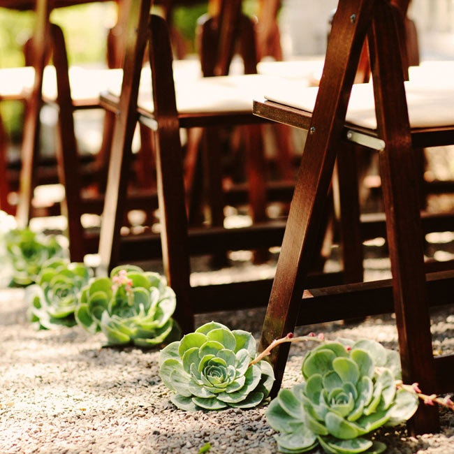 Large succulents lined the ceremony aisle.