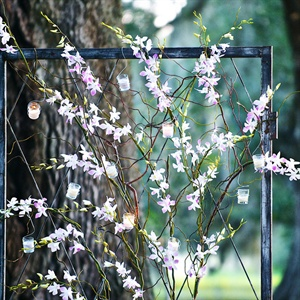 Four large iron screens framed the area where Leigh and Jake said their vows.  The screens had curly willow limbs and orchids entwined through them and held dozens of tea lights.