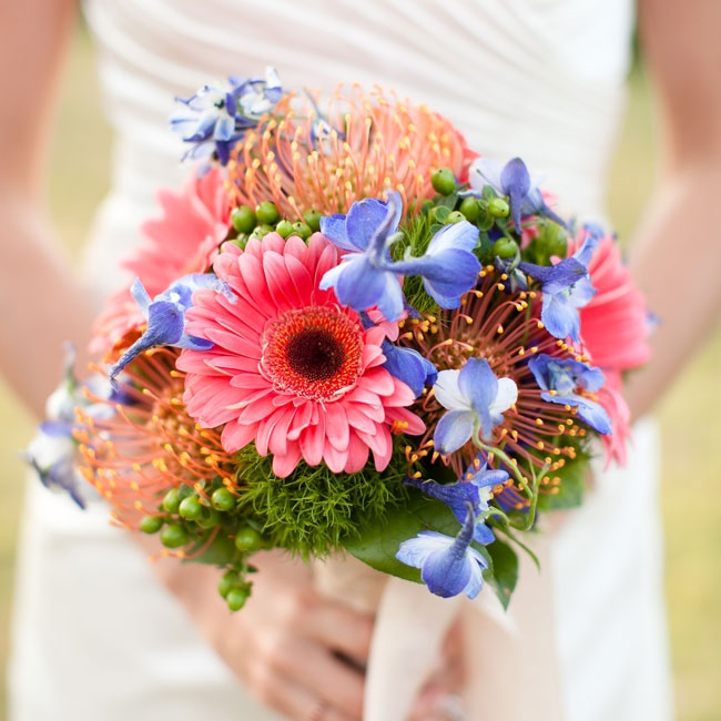Jamie carried coral gerbera daisies, green trick carnations, blue delphiniums and coral pincushion proteas.