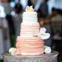 Lovebird Cake