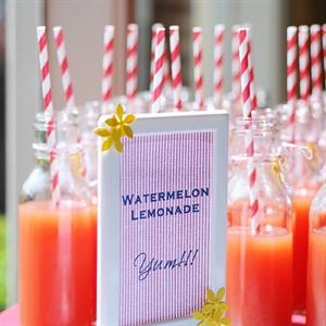 Watermelon Lemonade Drinks